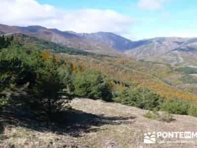Rio lillas, Cantalejo, Parque Natural del Hayedo de Tejera Negra; senderismo con niños madrid